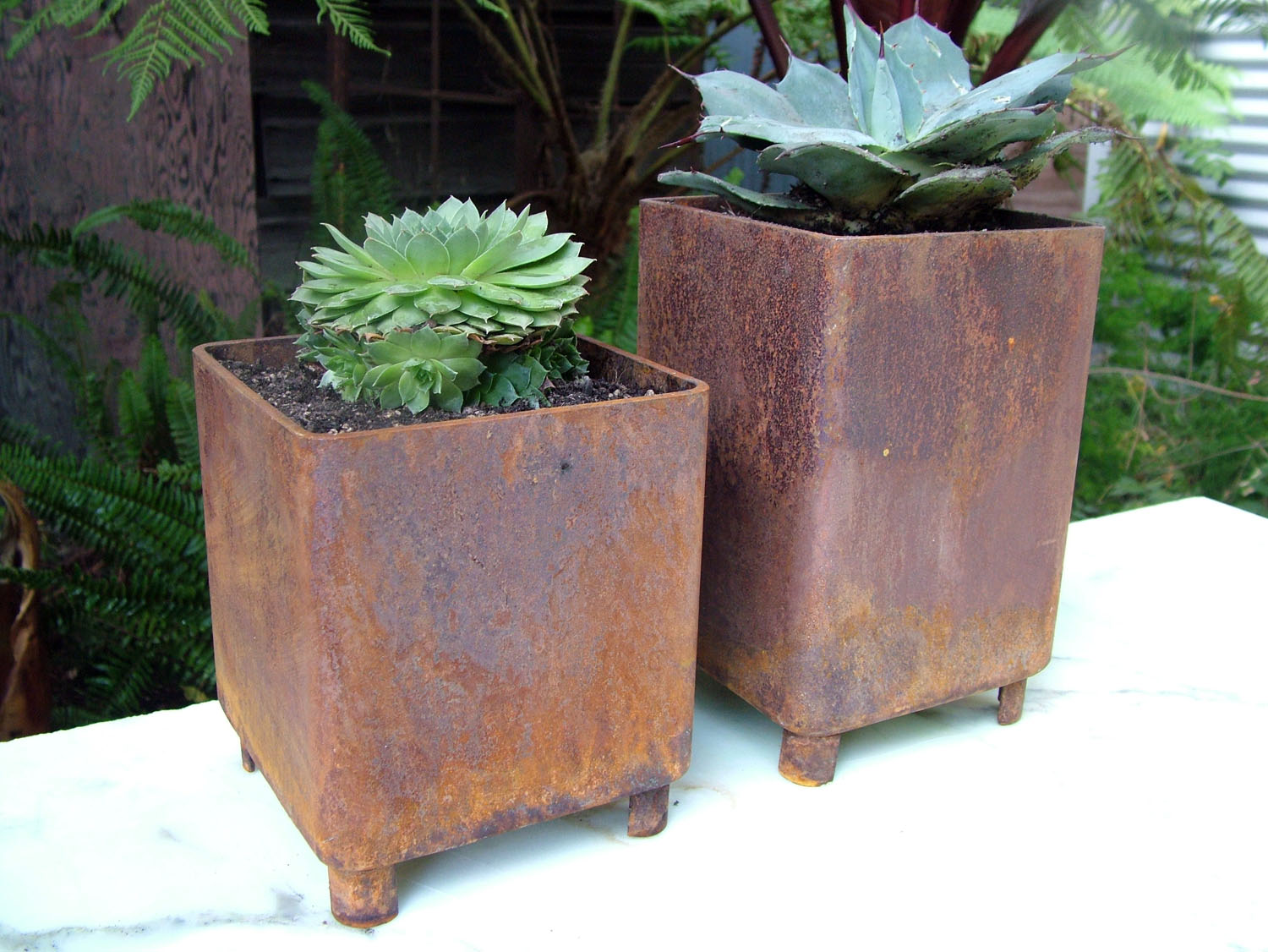 staci southwick  metal planters - home · blog · contact ← modern